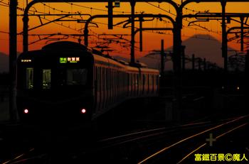 IMGP5509.jpg