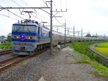 IMGW9420.JPG